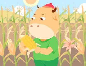 玉米种植成本保险