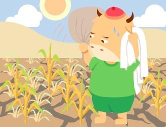 农业干旱保障服务