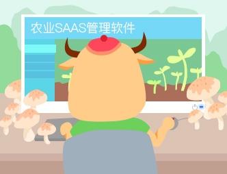 农业SAAS管理软件